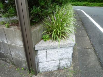 大野城市狭小花壇スペース植栽10