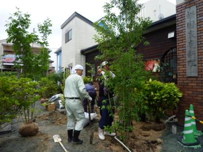植樹:生垣・シンボルツリー